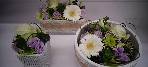 Ripoche Fleurs DSC00418 88