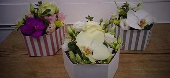 Ripoche Fleurs DSC00419 89