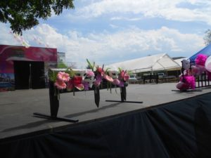 Ripoche Fleurs Madagascar 2015 503 108